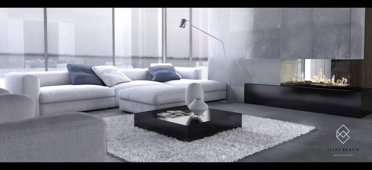 Sala: Salas de estilo  por Elias Braun Architecture