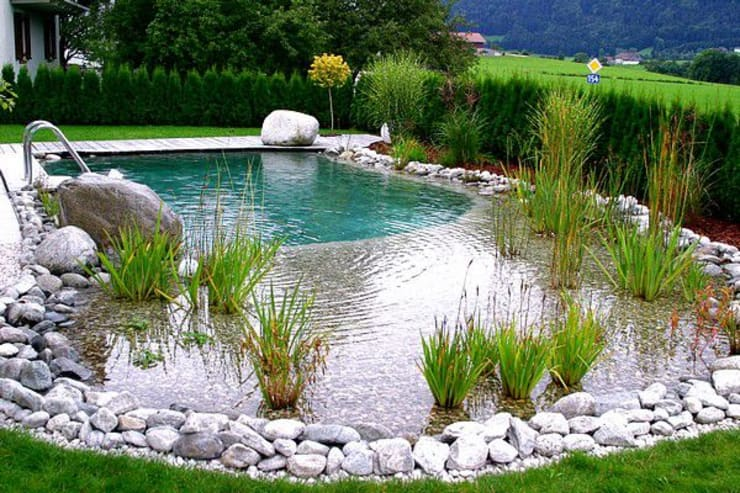 Bio Göl Havuz (Biyolojik Gölet ve Havuz Yapısalları) – Örnek Projeler:  tarz Havuz, Kırsal/Country
