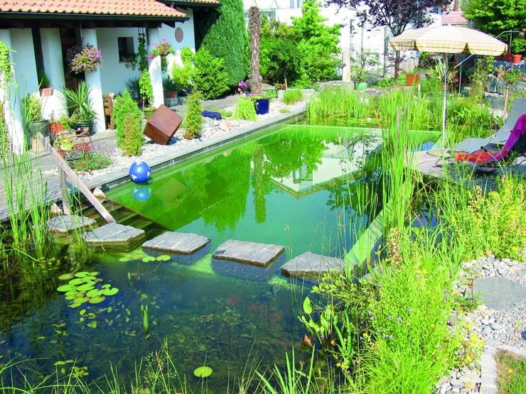 Piscinas de estilo  por Bio Göl Havuz (Biyolojik Gölet ve Havuz Yapısalları)