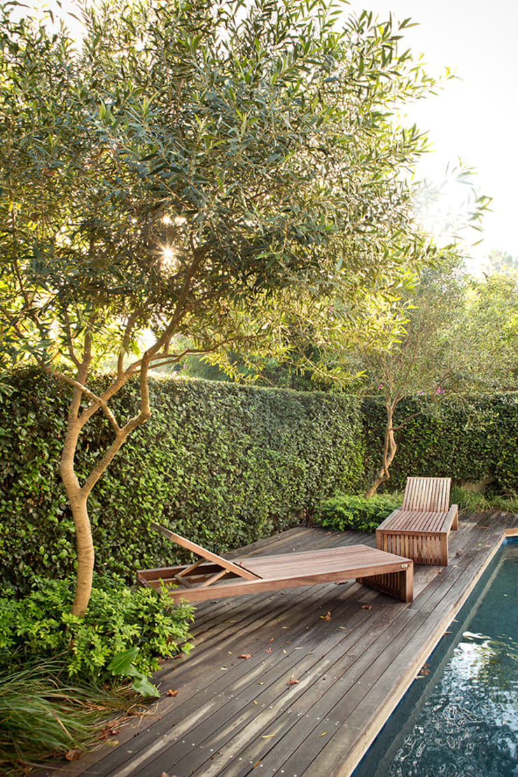 Formal Pool Area:  Garden by Red Daffodil
