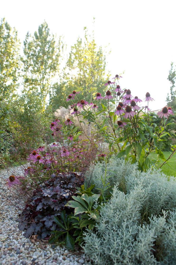 Sfeervolle tuin met gazon en siergras :   door Mocking Hoveniers