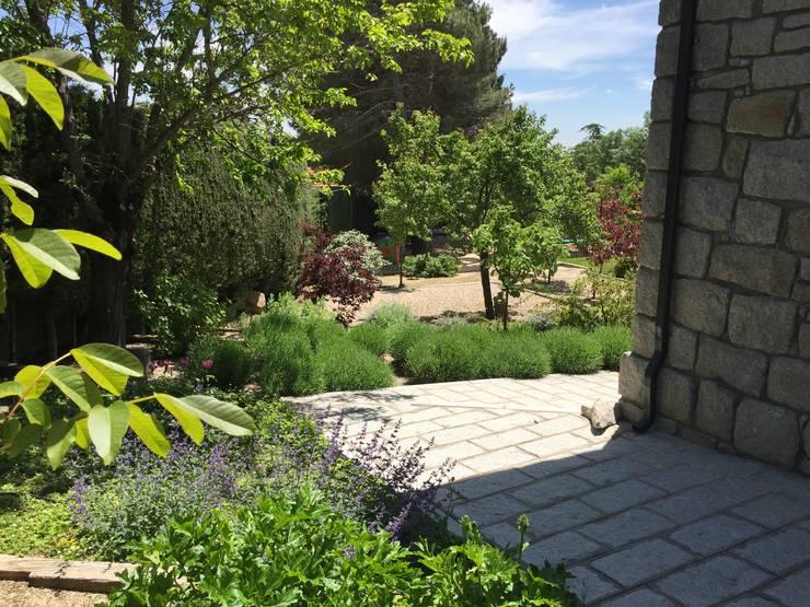 Jardin de style  par Azarbe jardines