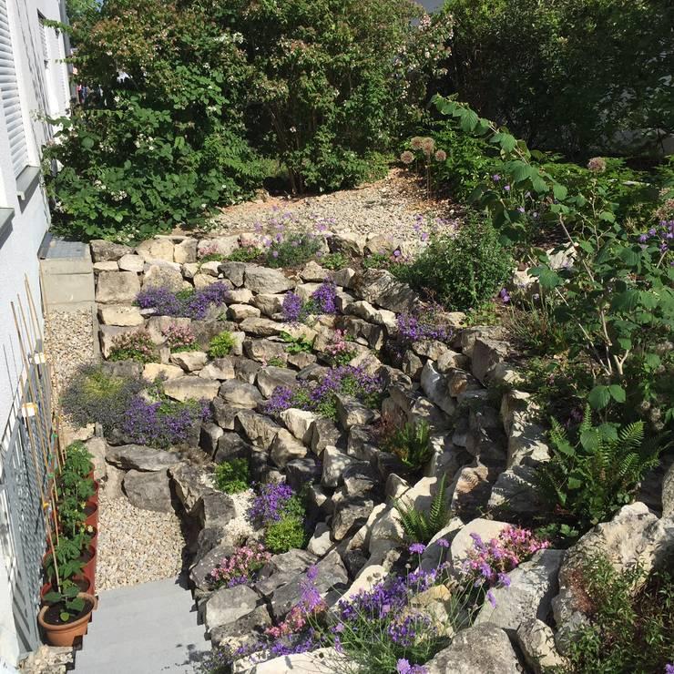 Aus der Not eine Tugend machen: anstatt die übrigen Steine zu entsorgen, wurden sie als Befestigung der Böschung eingebaut. Halbschatten liebende Mauer-Stauden befestigen das Erdreich. Eine sichere Treppe ermöglicht den Weg nach unten.:   von KAISER + KAISER - Visionen für Freiräume GbR