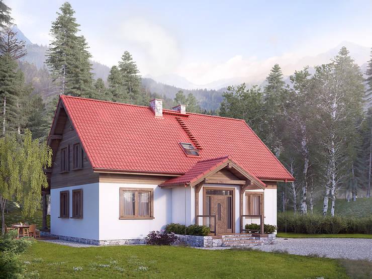 Wizualizacja projektu domu Poziomkowy: styl , w kategorii Domy zaprojektowany przez Biuro Projektów MTM Styl - domywstylu.pl