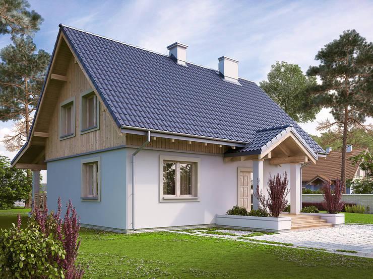 country Houses by Biuro Projektów MTM Styl - domywstylu.pl
