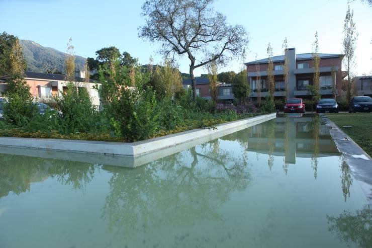 Fuente de la plaza central: Casas de estilo  por Proyecto Norte,