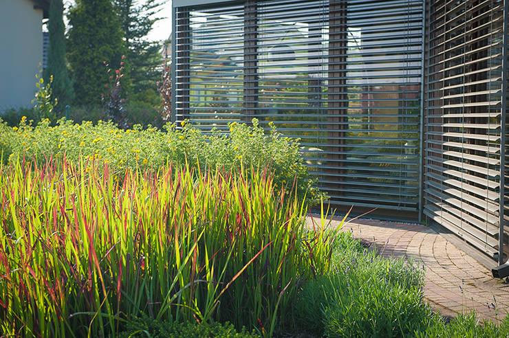 Jardines de invierno de estilo moderno por Pracownia Projektowa Architektury Krajobrazu Januszówka