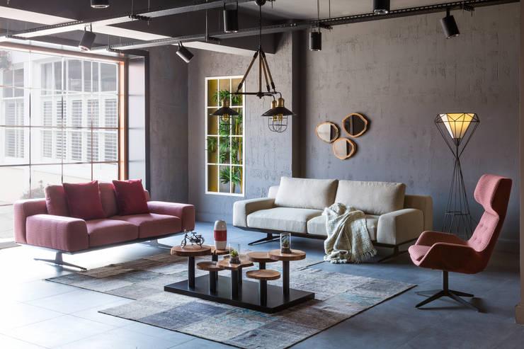 GESD MOBİLYA – Gesd mobilya:  tarz Ev İçi