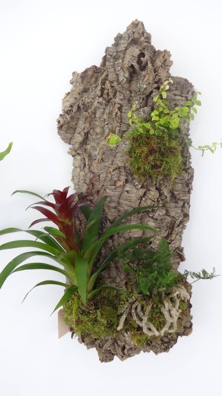 Jardim vertical em cortiça: Paisagismo de interior  por Interior Vivo