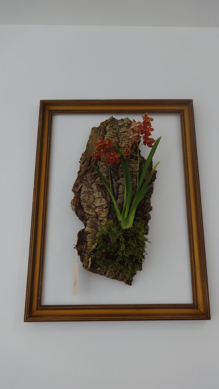 Jardim vertical em cortiça com orquídea e moldura: Paisagismo de interior  por Interior Vivo