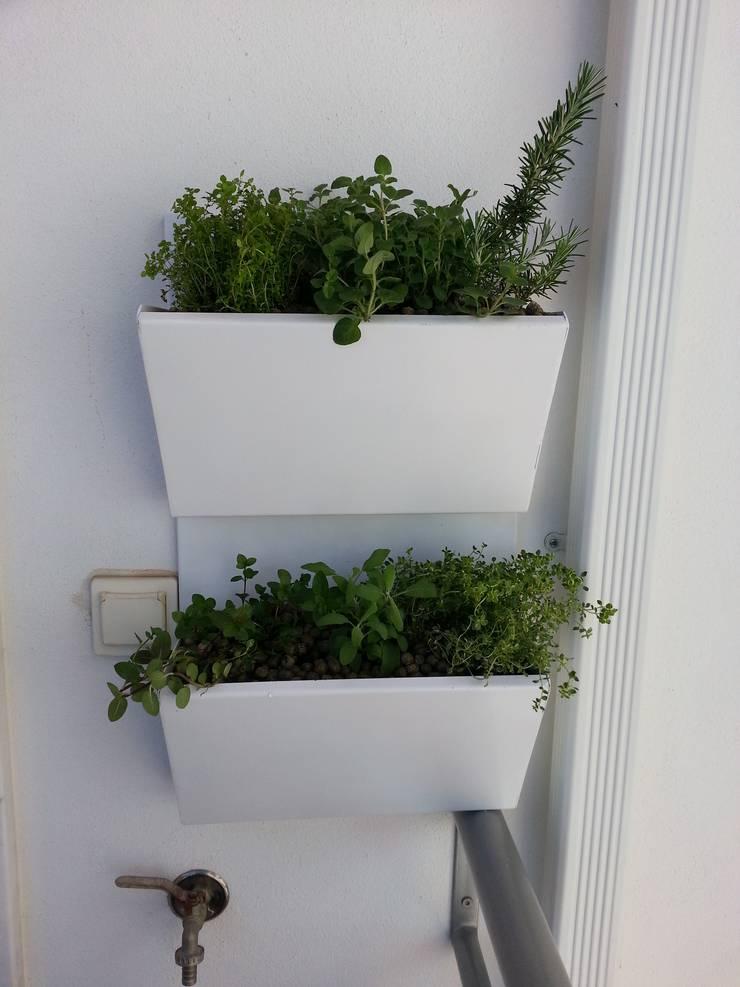 Jardim vertical de aromáticas: Varanda, marquise e terraço  por Interior Vivo