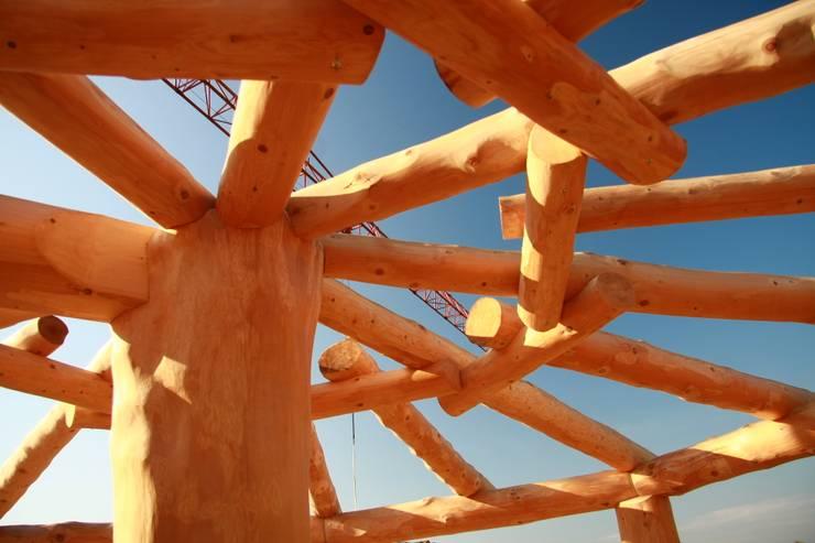 Altana w Nakle nad Notecią: styl , w kategorii  zaprojektowany przez Organica Design & Build