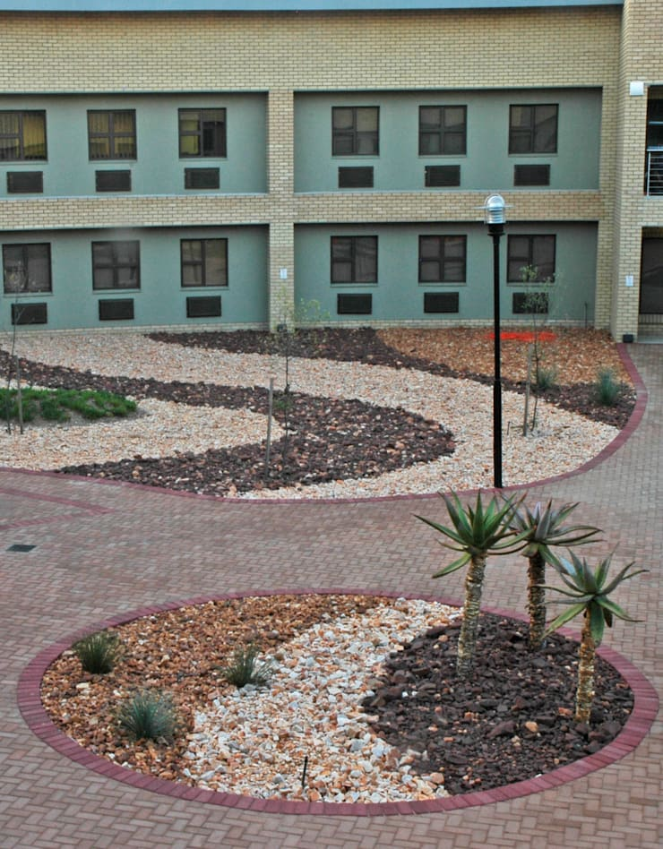 Entrance landscaping at the Tourism Hub: modern  by Mohlolo Landscape Architects, Modern