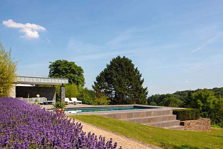 Sportlicher Gartenpool im Bergischen: moderner Garten von Hesselbach GmbH