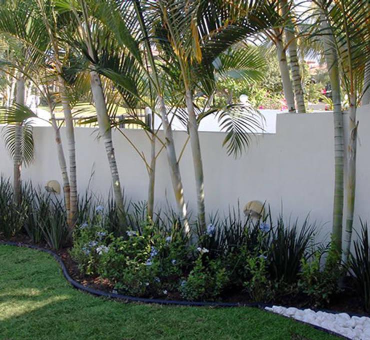 JARDINES PEQUEÑOS: Jardines de estilo moderno por Tropico Jardineria