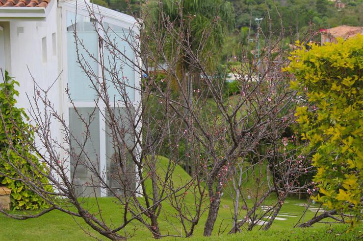 Fachada : Casas  por IDALIA DAUDT Arquitetura e Design de Interiores