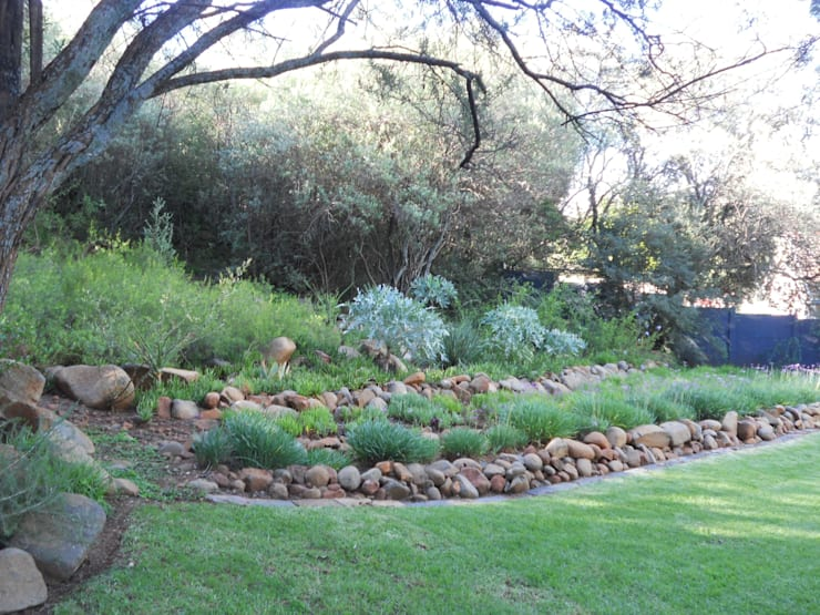 House Smit, Bloemfontein, Free State:  Garden by Sm!t Architects