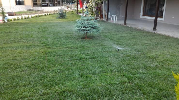 konseptDE Peyzaj Fidancılık Tic. Ltd. Şti. – M.B KONUTU HAZIR RULO ÇİM UYGULAMASI:  tarz Bahçe