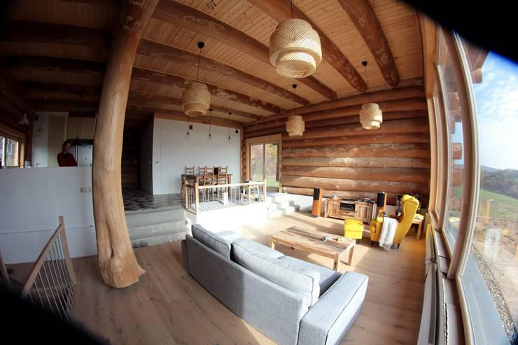 Nadbudowa Grzegorzowice: styl , w kategorii Salon zaprojektowany przez Organica Design & Build