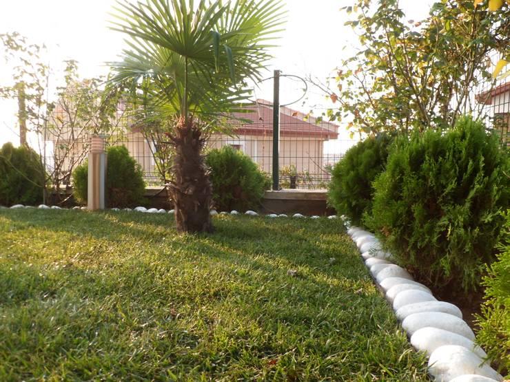 konseptDE Peyzaj Fidancılık Tic. Ltd. Şti. – A.N KONUTU HAZIR RULO ÇİM UYGULAMASI:  tarz Bahçe, Modern