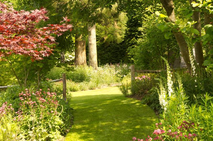 Contemporary Surrey Garden with Outdoor Kitchen.: country Garden by Elks-Smith Landscape and Garden Design