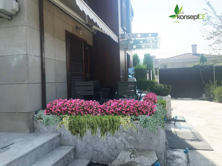 Jardines de estilo  por konseptDE Peyzaj Fidancılık Tic. Ltd. Şti.