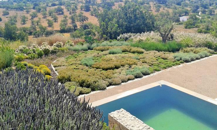 Jardim Malhão: Jardins  por JARDIMGARVE