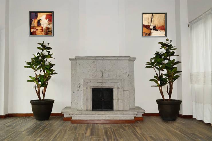 Magnolia 138: Hogar de estilo  por Ranka Follaje Sintético