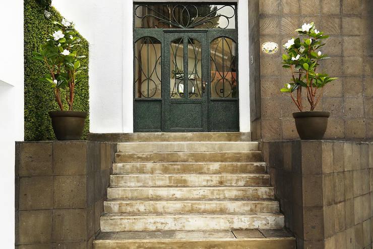 Magnolia 234: Vestíbulos, pasillos y escaleras de estilo  por Ranka Follaje Sintético