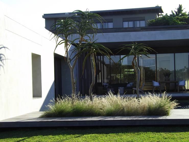Forest View Garden:  Garden by Simon Clements: Garden & Landscape Design, Modern