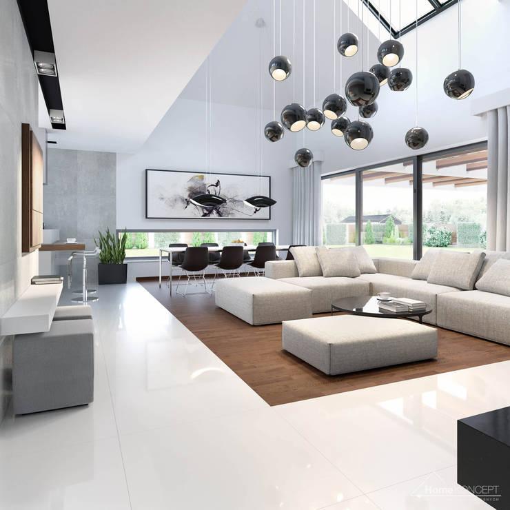 Living room by HomeKONCEPT | Projekty Domów Nowoczesnych