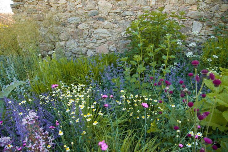 Jardín en Segovia: Jardines de estilo  de Planta Paisajistas