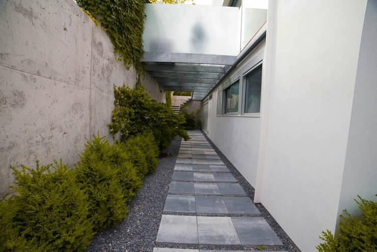 Garden in Madrid Modern Garden by Planta Paisajistas Modern