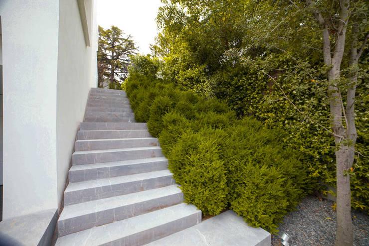 Jardin de style  par Planta Paisajistas