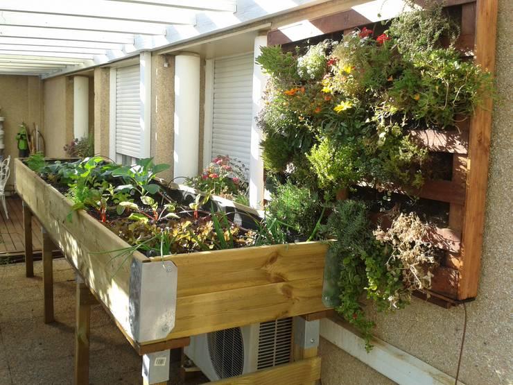 Terrazas  de estilo  por Agrópolis Jardín