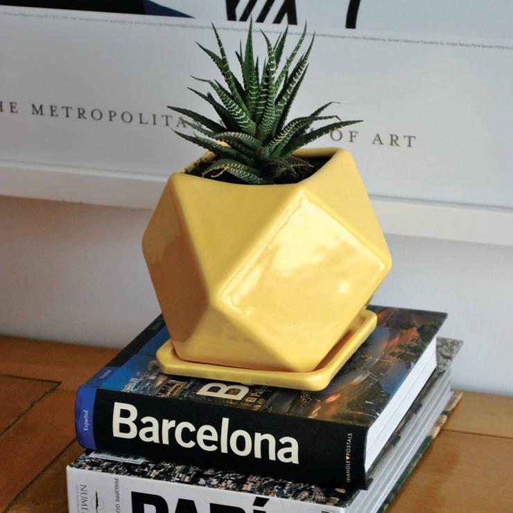 modern  by Bizcocho, Modern Pottery