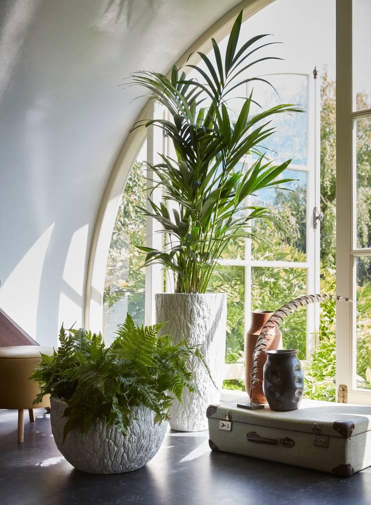 Capi Nature Indoor - Vaas elegant en Schaal Wit met schorsstructuur:   door Capi Europe, Landelijk
