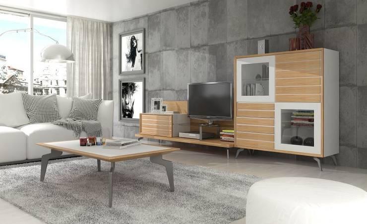 Mobiliário de sala de estar Living room furniture www.intense-mobiliario.com  ORTER :   por Intense mobiliário e interiores;,Moderno