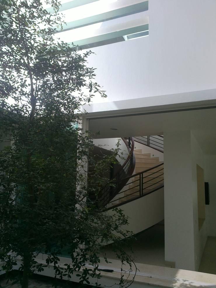 Patio Interior: Jardines de estilo  por Bojorquez Arquitectos SA de CV