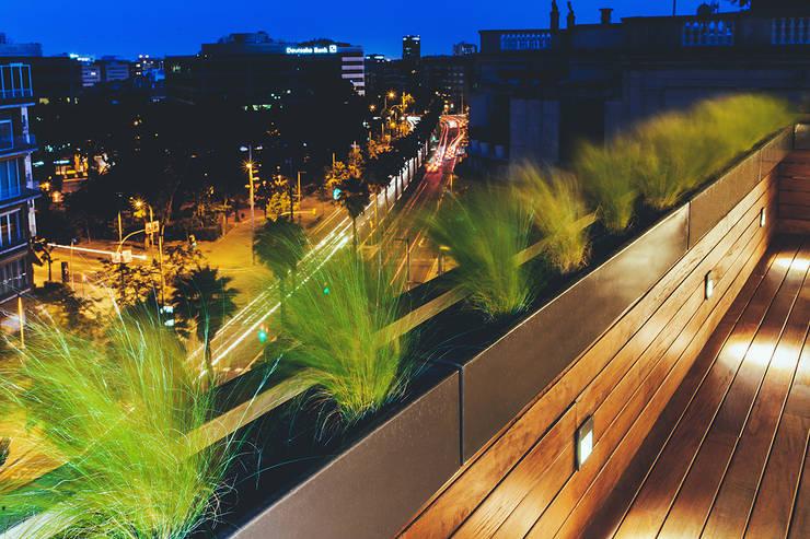 Garden by dom arquitectura, Modern