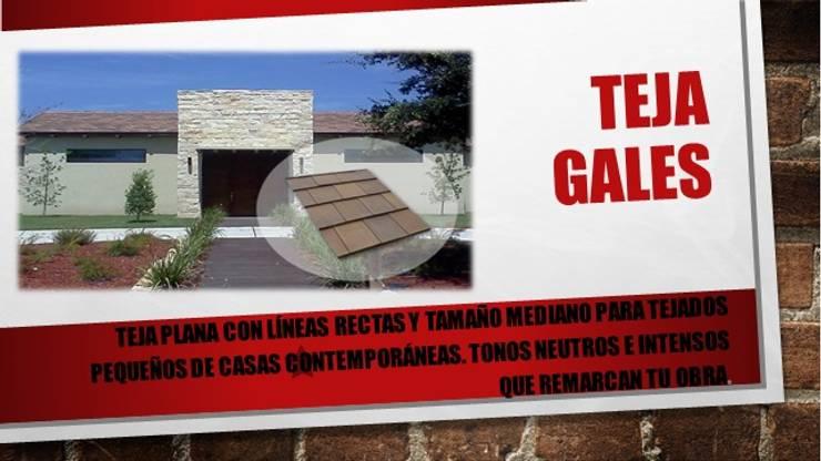 """TEJAS PLANAS """"GALES"""": Casas de estilo  por ENFOQUE CONSTRUCTIVO"""