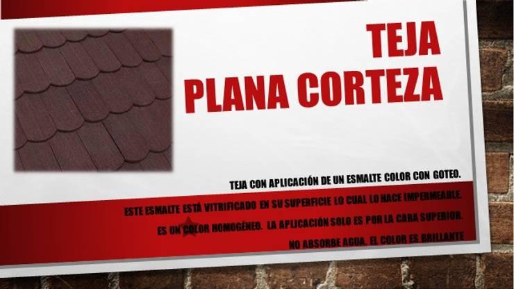"""TEJA PLANA """"CORTEZA"""": Casas de estilo  por ENFOQUE CONSTRUCTIVO"""