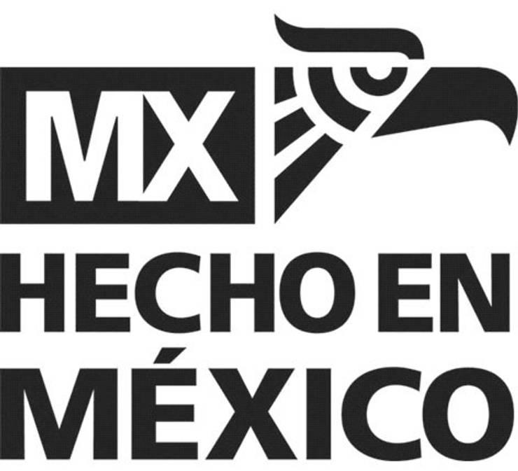 HECHO EN MEXICO: Casas de estilo  por ENFOQUE CONSTRUCTIVO