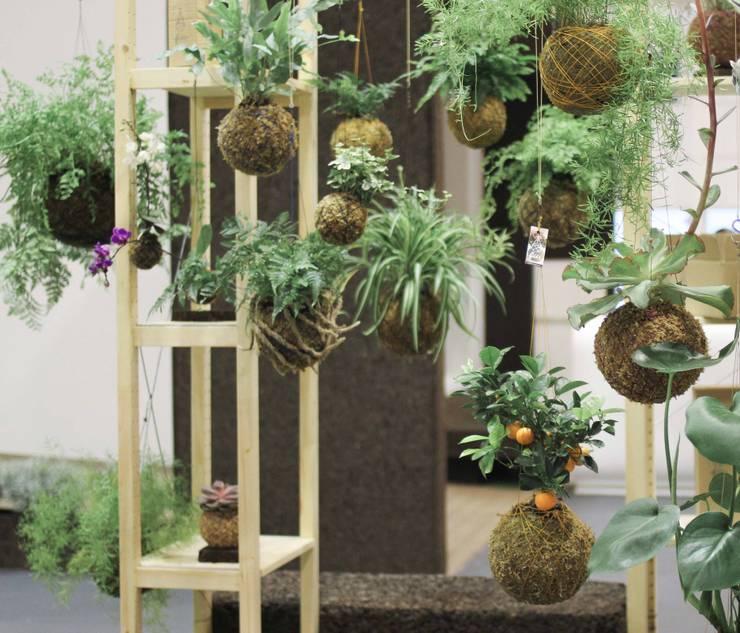 Showroom Lisboa Design show 2014: Jardim  por fiu jardins, lda.