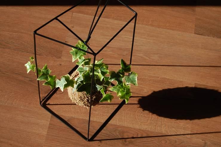 Estrutura fiu: Arte  por fiu jardins, lda.