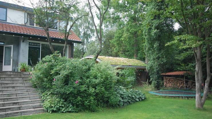 GROEN DAK OP INDUSTRIËLE CONSTRUCTIE:  Houten huis door Tijmen Bos Architecten
