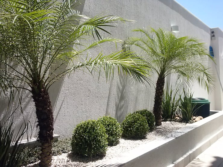 庭院 by Mateus Motta Paisagismo