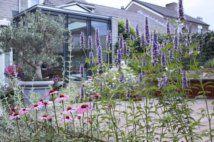 Achtertuin Maastricht:  Tuin door Hoveniersbedrijf Guy Wolfs