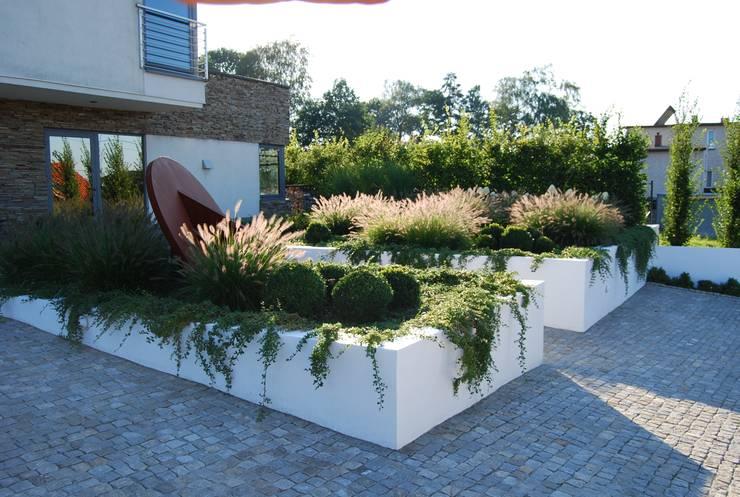 Jardines de estilo moderno por MUGO OGRODY