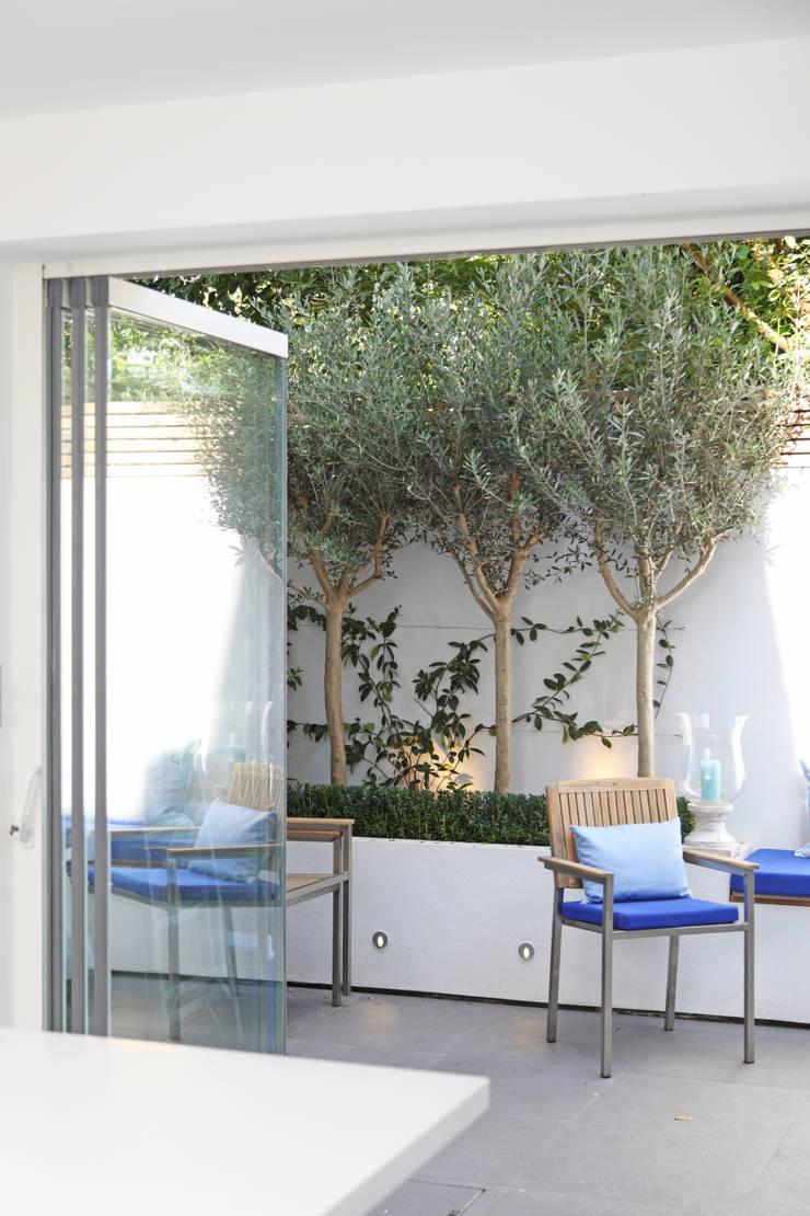 Jardin de style  par PAD ARCHITECTS, Moderne